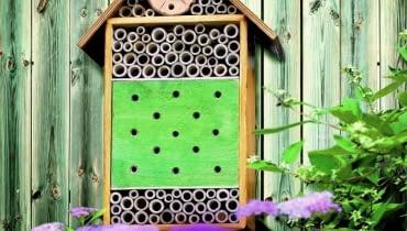 Budka dla owadów pożytecznych