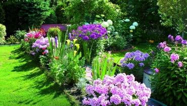 Pełnia lata to najpiękniejszy czas w moim ogrodzie - rabaty dosłownie toną w kwiatach.