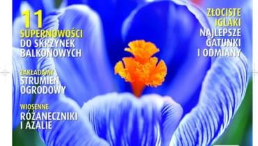 Okładka miesięcznika Kwietnik nr 02/2011