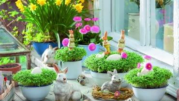 Wśród zielonych miniłączek z rzeżuchy i stokrotek przysiadły zające... a może króliki?