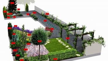 Projekt ogrodu w cieniu topoli