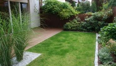 Mały ogród przy szeregowcu.