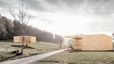 dom, bauhaus, projekt domu, natura, dom dla dominika, drewniany dom