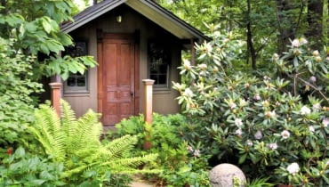 Woodland garden with custom built garden shed.