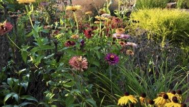 Byliny pełnią w tym ogrodzie najważnieszą funkcje - to one zapewniają mu zmienność, bogactwo kolorów i kwiatów