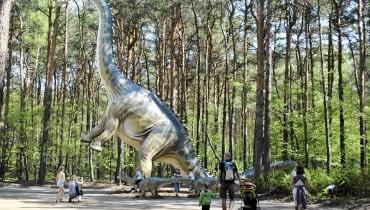 Leśny Park Kultury i Wypoczynku Myślęcinek, Bydgoszcz