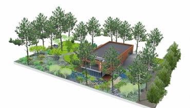 Projekt ogrodu na leśnej działce