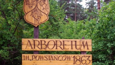 Arboretum w Kopnej Górz
