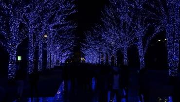Tokio iluminacja
