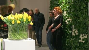 Wystwa tulipanów w Wilanowie