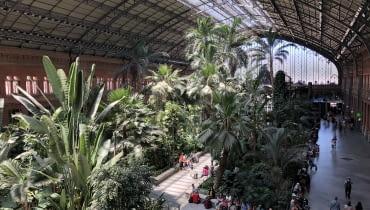 Dworzec kolejowy Atocha w Madrycie.