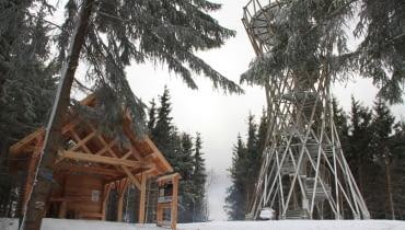 Wieża widokowa na szczycie Borowej Góry
