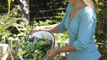 Frau schuettet Kuechenabfaelle auf den Kompost61053298SLOWA KLUCZOWE:draussen Sptsommer hoch Garten Praxis Person msgnp12 000 Biogarten GEMSEGARTEN Bauerngarten