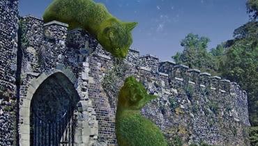Kocie topiary