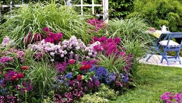 rabata z trawami i kwiatami