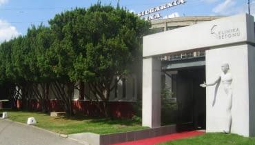 Pracownia projektowa Klinika betonu i fantastyczny rząd ładnie wypielęgnowanych starych cisów