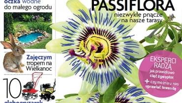 Okładka miesięcznika Magnolia 04/2013
