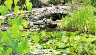Ogród w Młodzawach Małych k. Pińczowa
