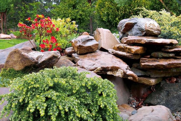 Mam takie hobby, żezbieram kamienie - piękne iniepospolite. Kanciaste, pomarszczone, rzeźbione naturą -przede wszystkim szare, bo te są najbardziej naturalne.