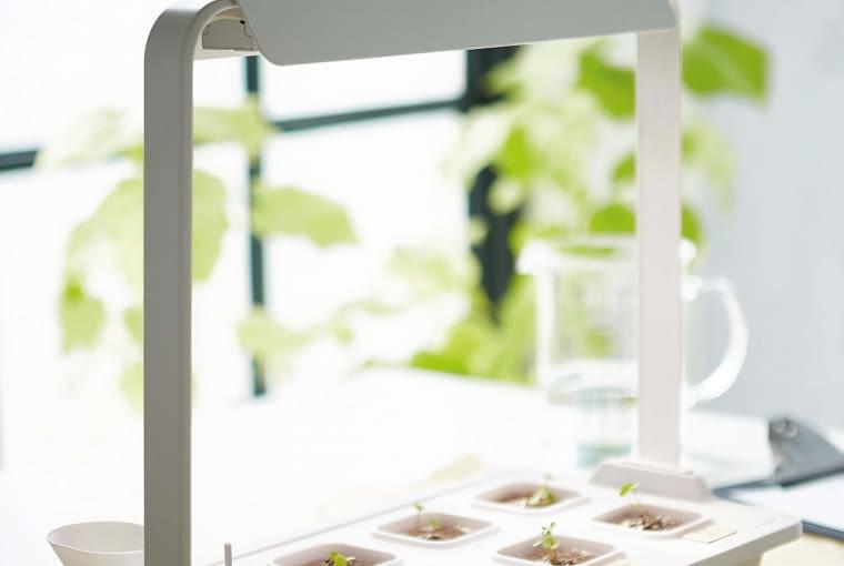VÄXER, listwa oświetleniowa do roślin, dł. 46,5 cm, moc 16 W 199 zł; uchwyt do oświetlenia 29,99 zł IKEA