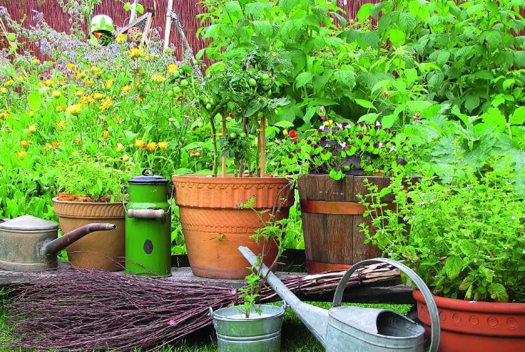 Swojski klimat wiejskiego ogródka tworzą także niewyszukane detale.