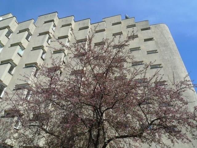 Blok przy ul. Koziej 9, Warszawa, fot. ace