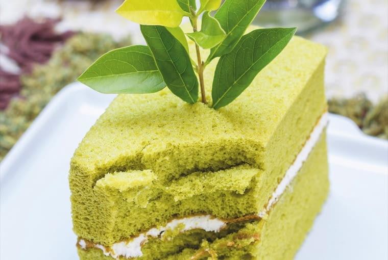 Herbaciany zielony torcik
