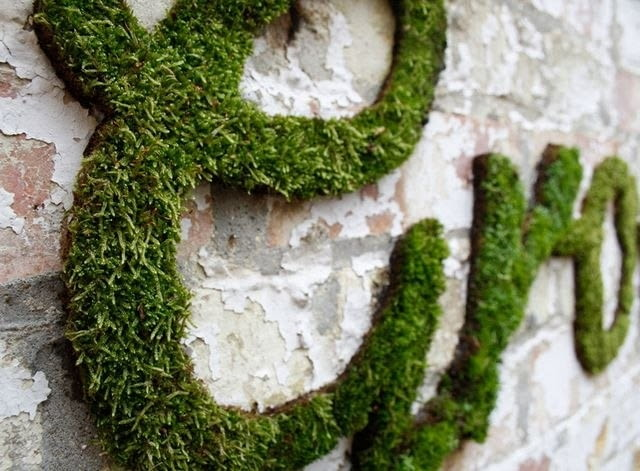 Roślinne graffiti, proj. Anna Garforth, źródło: www.annagarforth.co.uk
