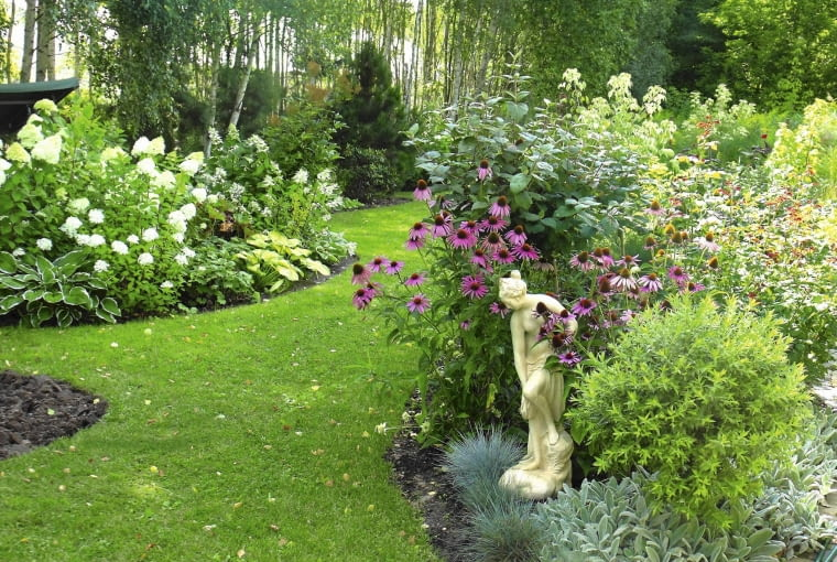 Brzozowy zagajnik na obrzeżach ogrodu jest tłem dla szerokich rabat, na których pysznią się kwitnące krzewy