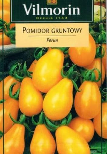 Pomidor koktajlowy 'Perun'
