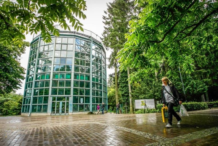 Gdansk Hotel Zamiast Muzeum I Kawiarnia W Miejscu 180 Letniej Palmy