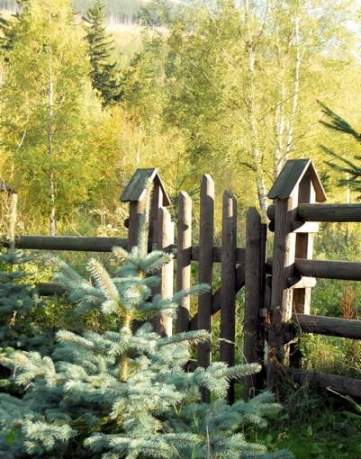 Tradycyjna konstrukcja farmerskiego płotu dodaje leśnej działce swobodnego charakteru