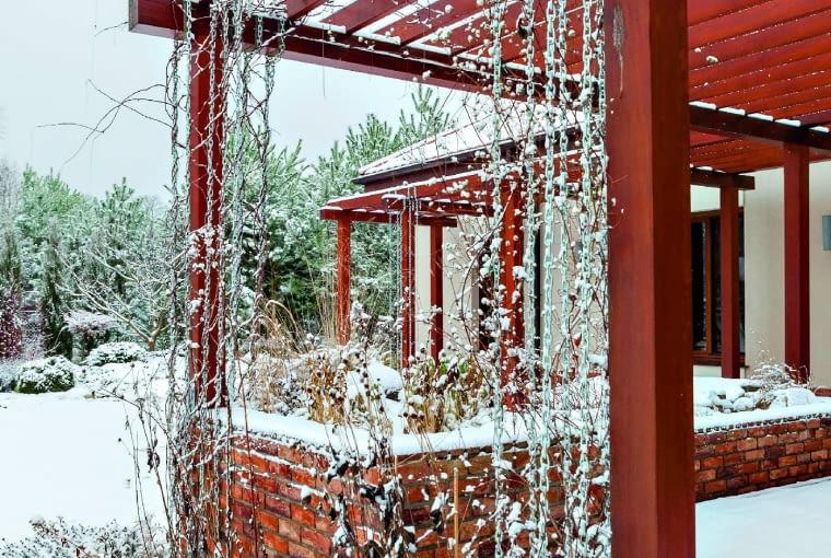 Taras zażurowym przykryciem latem ozdobiony kwiatkami powojników iakebiii, zaś zimą rysunkiem ich pędów.