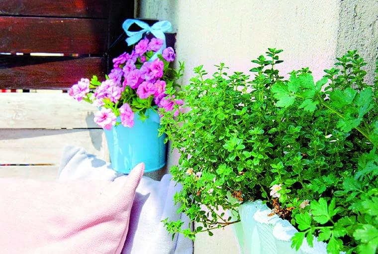 """Ogródek ziołowy urządziłam na parapecie kuchennego okna. Starą skrzynkę, w której posadziłam zioła, zamaskowałam pomalowanym na biało """"płotkiem"""" z rollbordera."""