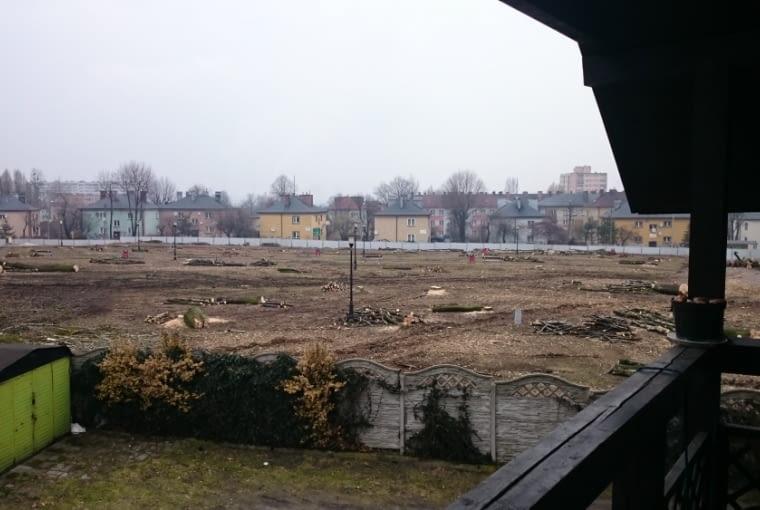 MAKABRYŁA ROKU 2014: Wykarczowany park w Rybniku