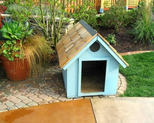 M-2 dla psa. Dzięki oknu wyciętemu pod dachem (nad wejściem) pies może podziwiać świat stojąc na czterech łapach.