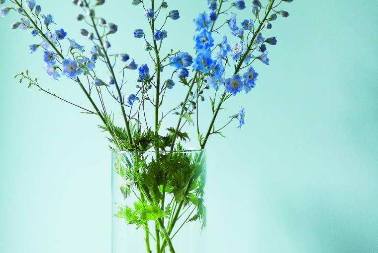 I WIĘCEJ NIE TRZEBA. Subtelna dekoracja: błękitne ostróżki w prostym szklanym wazonie. Obok - miski z Nap.
