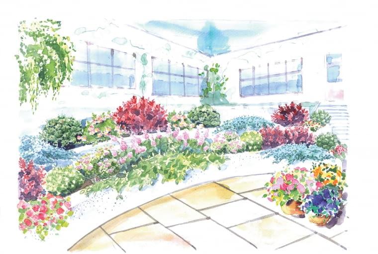 Roślinny amfiteatr.