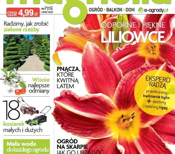 Okładka miesięcznika Magnolia 07/2013