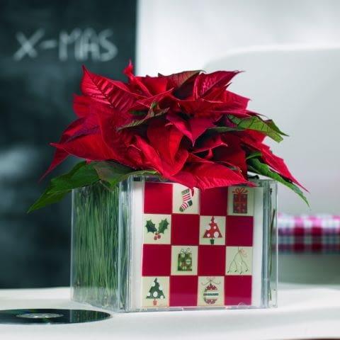 Ozdoby świąteczne na Boże Narodzenie. Gwiazda betlejemska