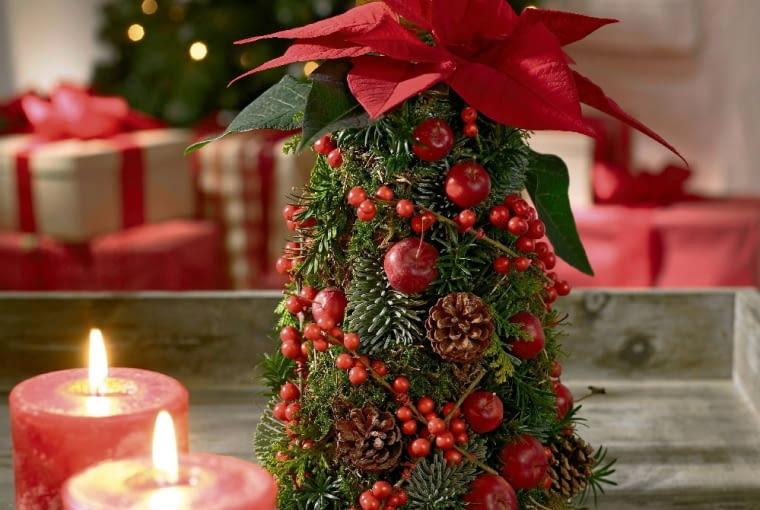 pomysł na choinkę, pomysł na świąteczne drzewko, choinka z mchu, szyszek i owoców