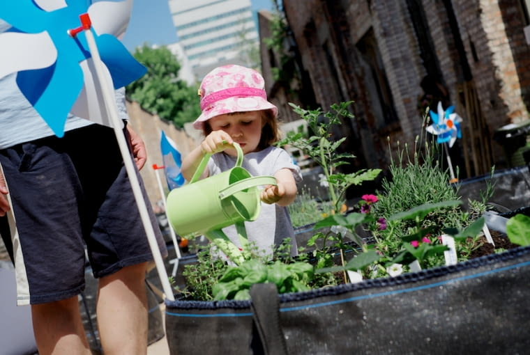 Miasto i Ogród - otwarcie