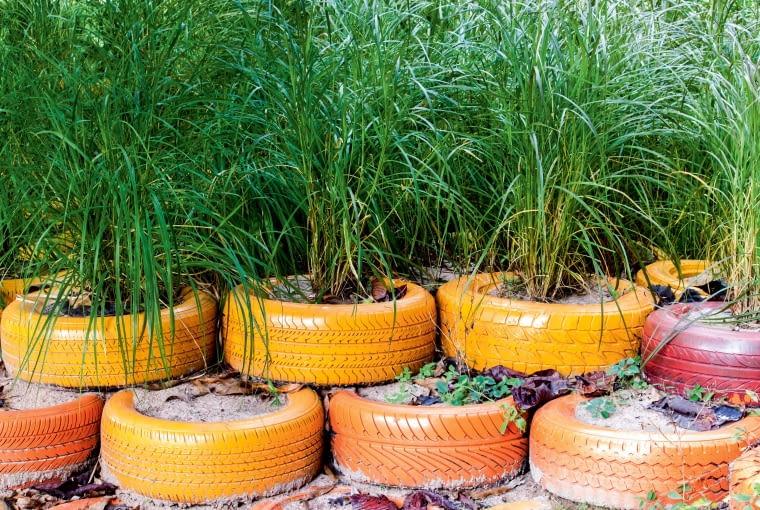 'Murek' z opon wypełnionych ziemią i obsadzonych roślinami.