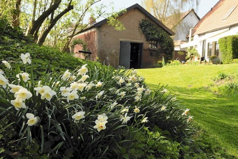 SLOWA KLUCZOWE: Spring Garden Strijbosch Press Garden