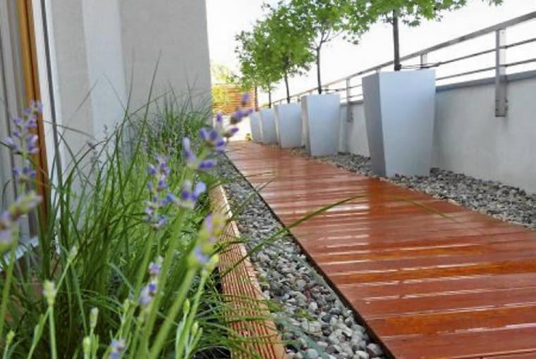 Rośliny balkonowe. Wzdłuż ciągu komunikacyjnego stanęły donice z pięknie przebarwiającymi się jesienią klonami palmowymi