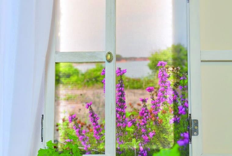 Trudno oprzeć się wrażeniu, że przez to okno rozpościera się widok na łąkę i jezioro. Na pierwszym planie kwitnące wrzośce.
