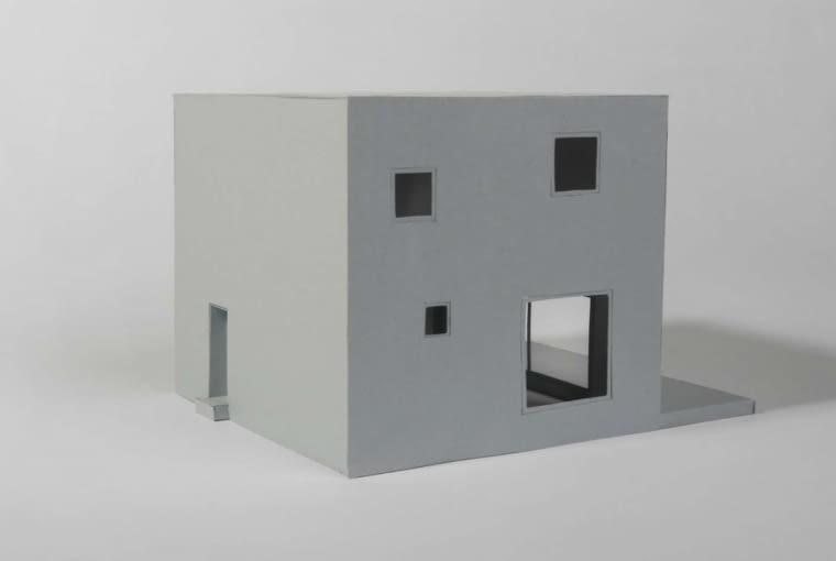 Metamorfoza domu kostki