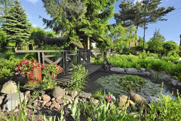 oczko wodne, mostek, ogród