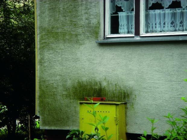 czyszczenie elewacji, mycie elewacji, tynk na elewacji, zniszczona elewacja, brudna elewacja