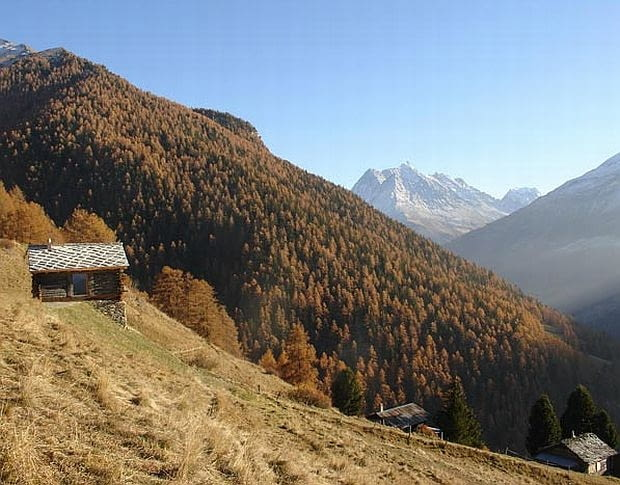 Dom w Alpach